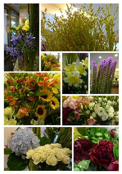 調整大小-2010-06-09 進花拍攝.jpg