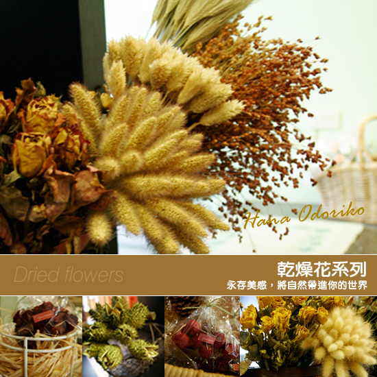 0415乾燥花系列-A.jpg