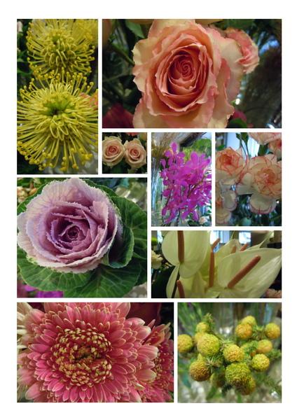 2010-9-30進花