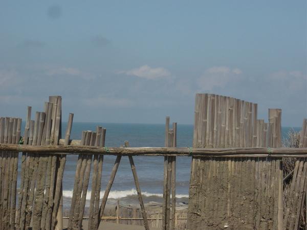 喜歡這樣看籬笆外的海