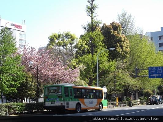 上野公園前-2.jpg