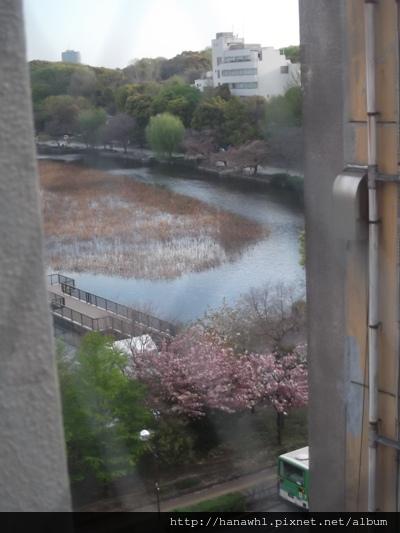 上野公園前旅館窗外.jpg