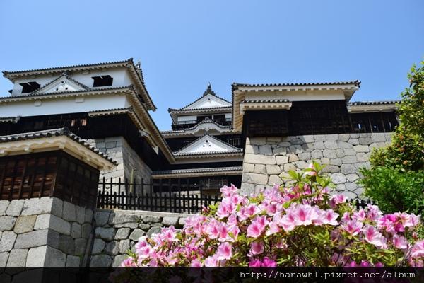 松山城-8.jpg