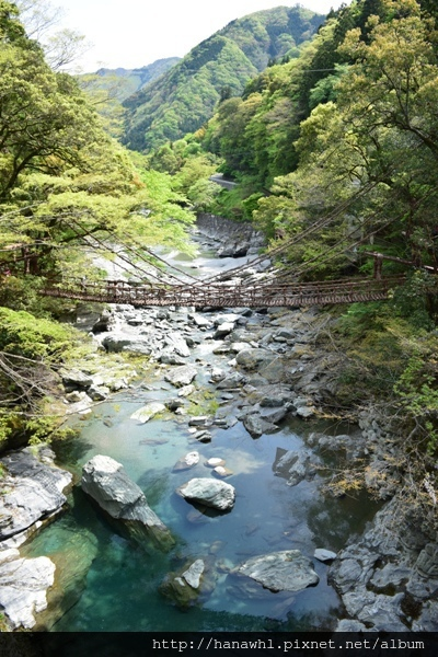 祖谷藤橋-4.jpg