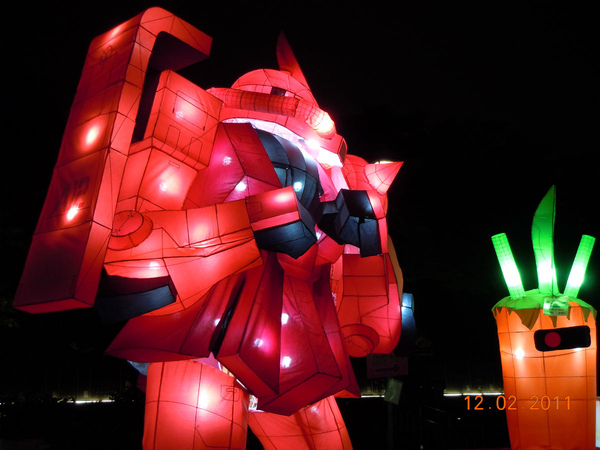 DSCN0437_機器人大戰紅蘿蔔.jpg