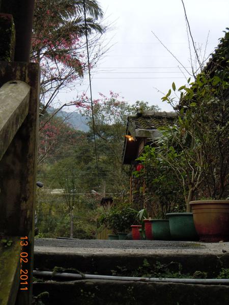DSCN0579-日式房屋.jpg