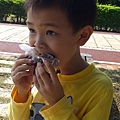 野餐吃甜甜圈