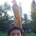明明是老鷹,弟弟很堅持說是鴿子