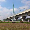 原本陰霾的天,到這已經可以看到藍天了,配上高鐵和玻斯菊花田,美景!
