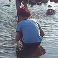 安弟一屁股坐在水上