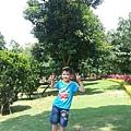 20130518_132319.jpg