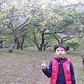 20140215_151252.jpg