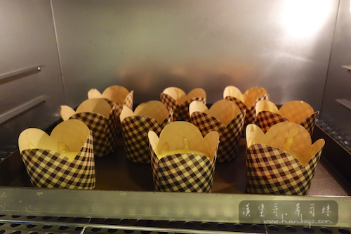 Muffin_馬芬_Hanbogo 834.jpg