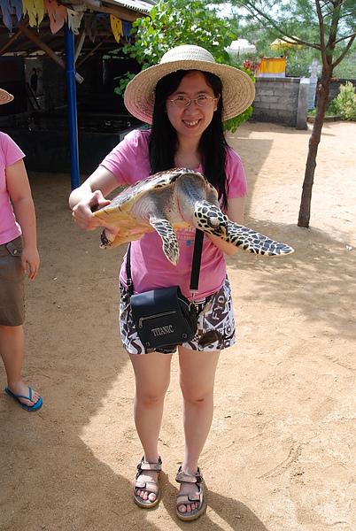抓小海龜拍照~02