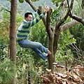 下樹標準動作4