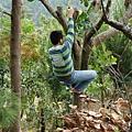 下樹標準動作6