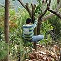 下樹標準動作7