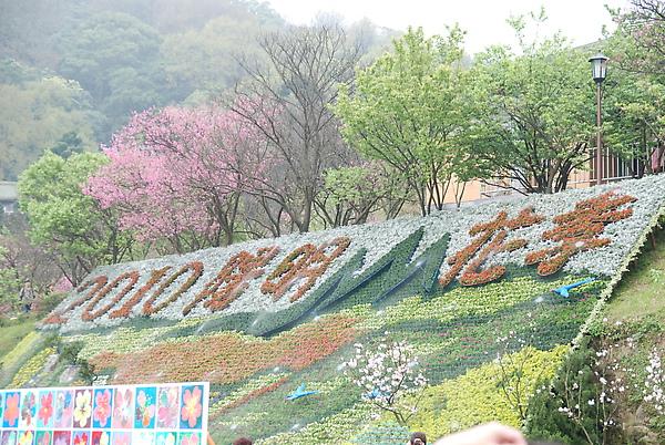 2010花季