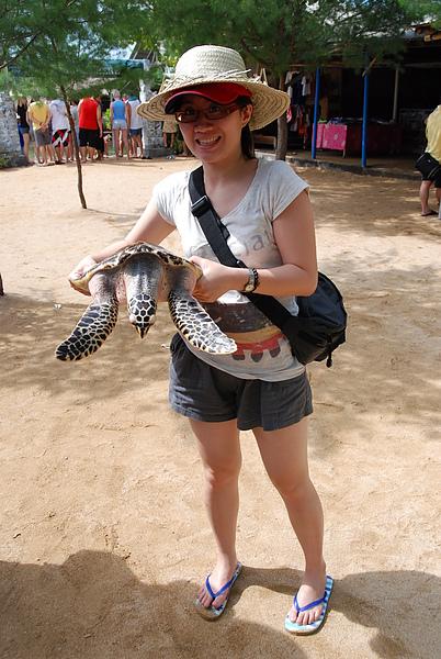 抓小海龜拍照~04