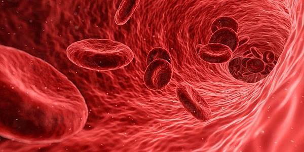 blood-1813410__340.jpg
