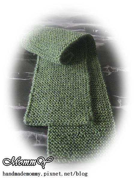 毛線編織-輪針圍巾.JPG