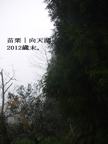 P1170798