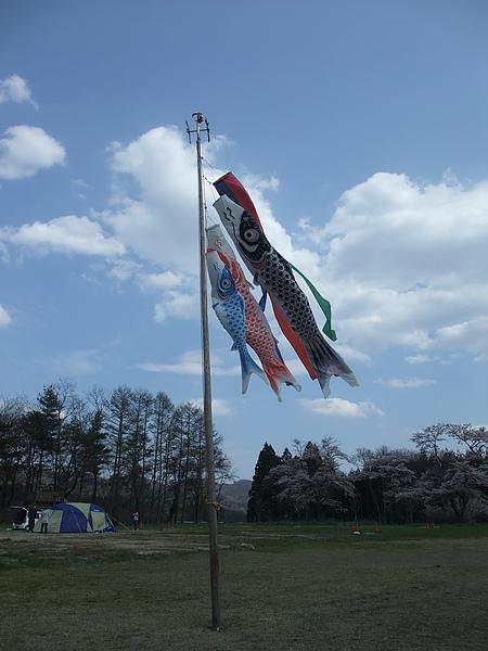 20100502 鯉魚旗