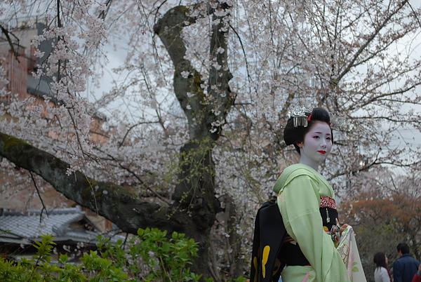 2010, kyoto