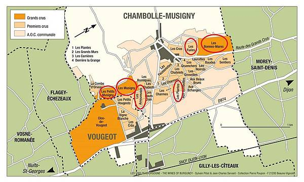 chambolle musigny map marked.jpg
