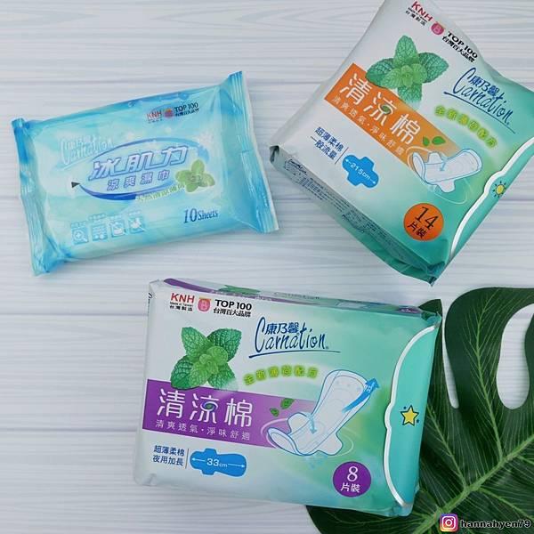 康乃馨 清涼棉║衛生棉 推薦║涼感衛生棉║夜用衛生棉║日用衛生棉║清爽 ║MIT製造║台灣製造