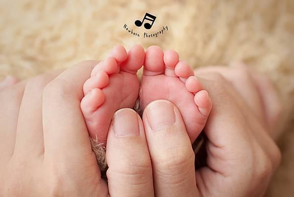 IMG_5036a台北新生兒攝影推薦║嬰悅新生兒寫真║到府拍攝║寶寶攝影║嬰兒攝影║新生兒拍攝║寶寶寫真║嬰兒寫真║月子中心 新生兒 攝影║新北市新生兒攝影║全家福║滿月