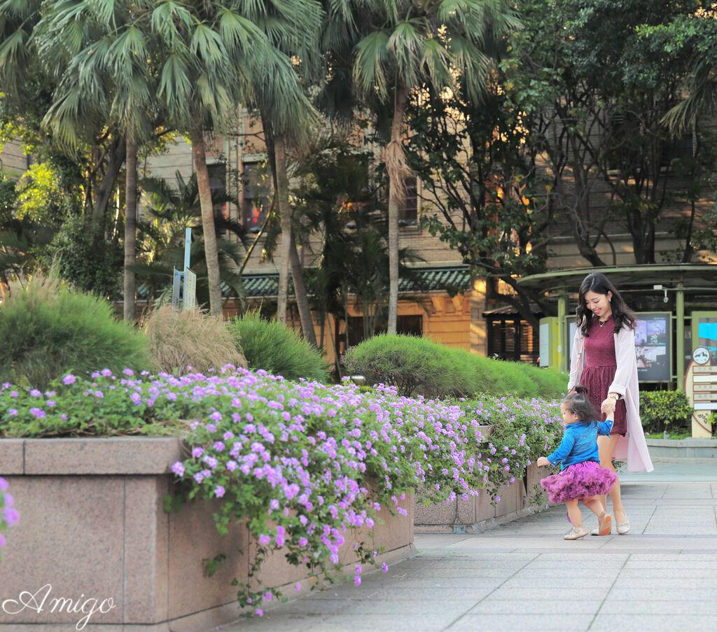 日安朵朵 tutu 蓬蓬裙