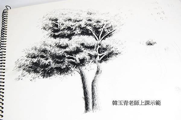 DSC_6463.jpg