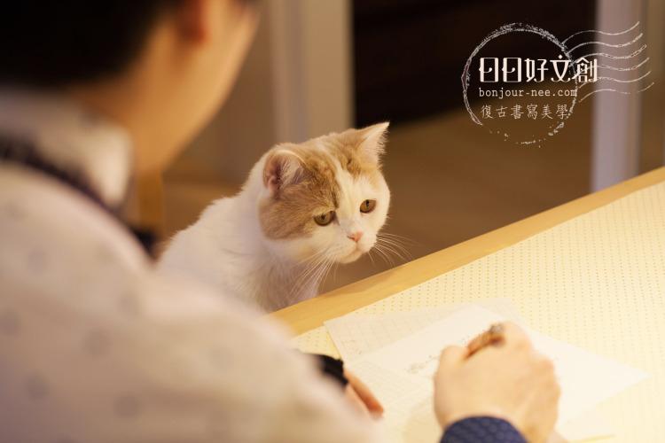 日日好文創貓鋼筆教室
