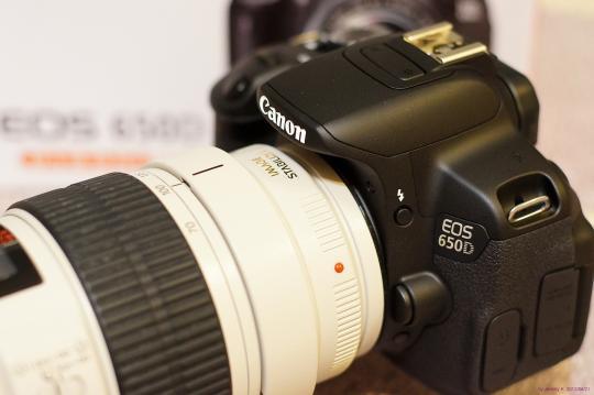 DSC03075s.jpg