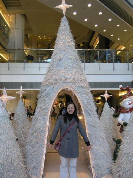 美美的聖誕樹
