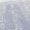 雪地中的倒影