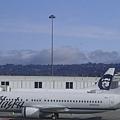 這是阿拉斯加航空!很酷的圖案!