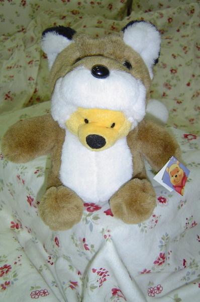 北海道偽裝狐狸的維尼