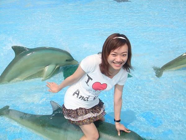 我要呈現我在騎海豚