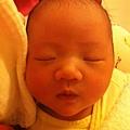 [0M]-睡覺的樣子很可愛