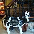 [BIG TOM]--乳牛在歡迎我們!!
