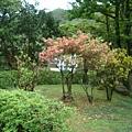 [金瓜石]--太子賓館日式庭院造景