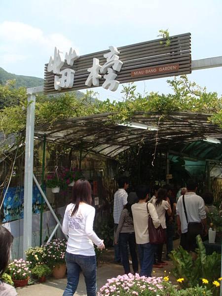 """[竹子湖]--中午用餐的地方""""苗榜"""""""