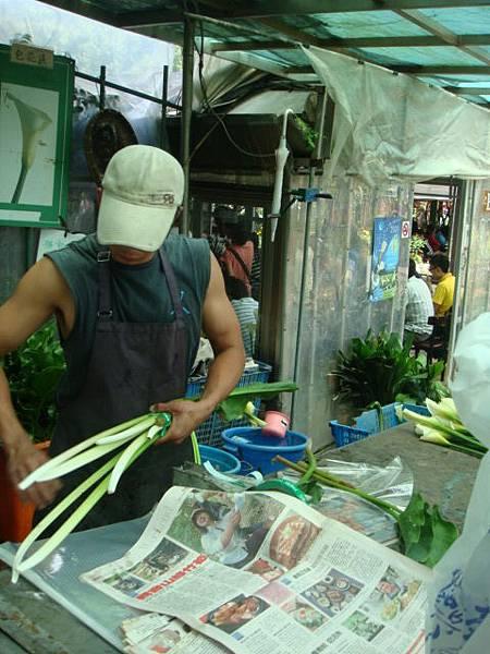 [竹子湖]--將採完的海芋交給老闆,會先剪掉尾端的部分