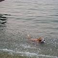 游的很開心啊~
