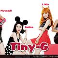 tiny-g140303.png