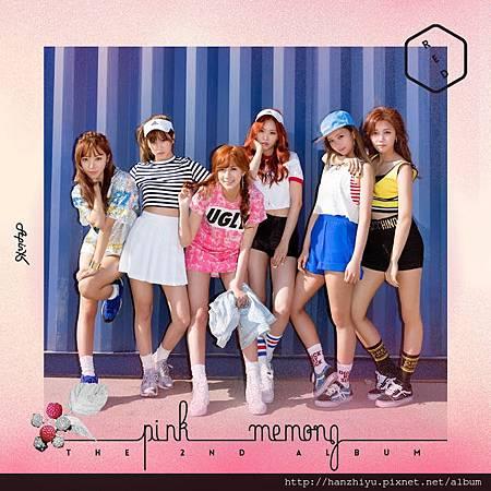 Pink MEMORY.jpg