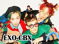 exo-cbx.jpg