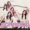 Sonamoo170112.png